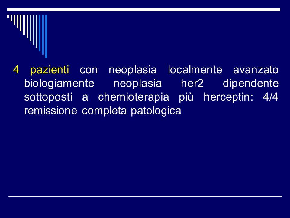4 pazienti con neoplasia localmente avanzato biologiamente neoplasia her2 dipendente sottoposti a chemioterapia più herceptin: 4/4 remissione completa patologica