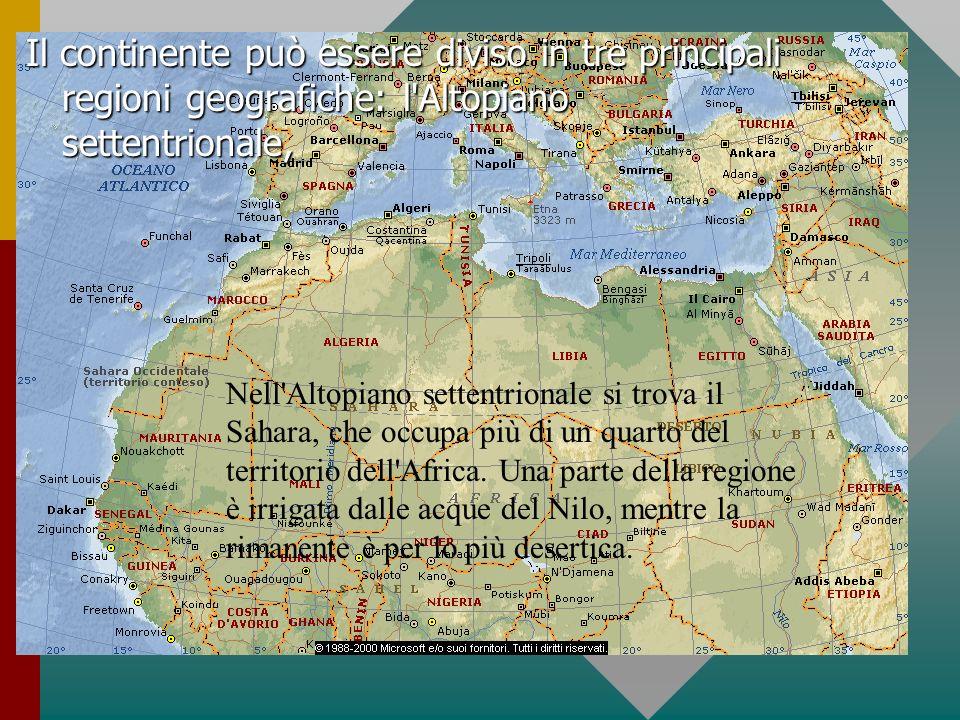 Il continente può essere diviso in tre principali regioni geografiche: l Altopiano settentrionale,