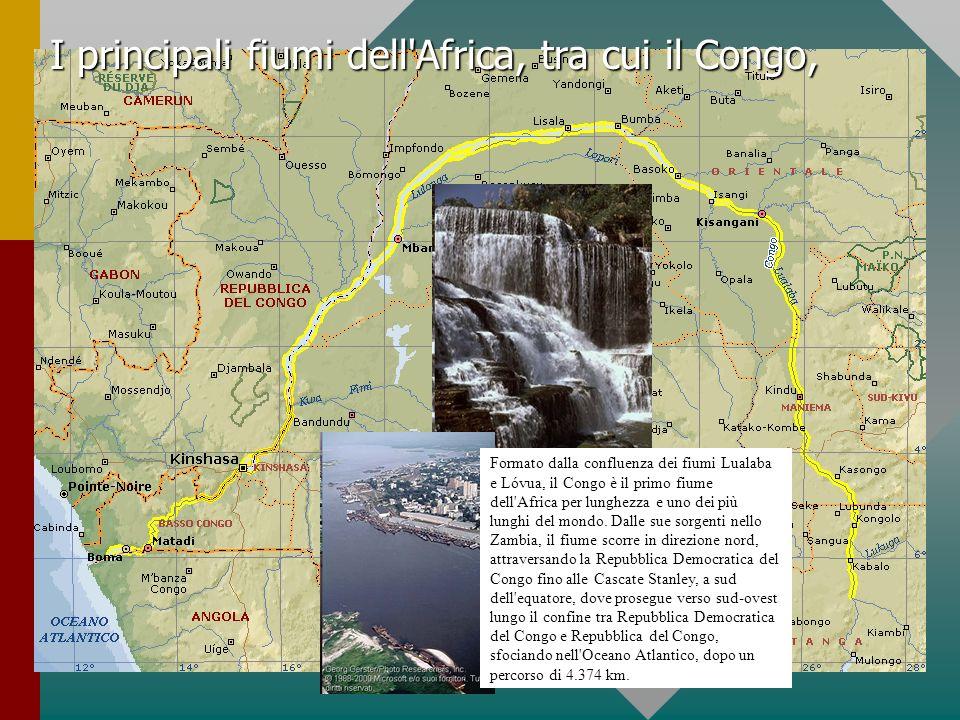I principali fiumi dell Africa, tra cui il Congo,