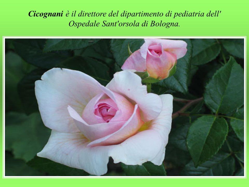 Cicognani è il direttore del dipartimento di pediatria dell Ospedale Sant orsola di Bologna.