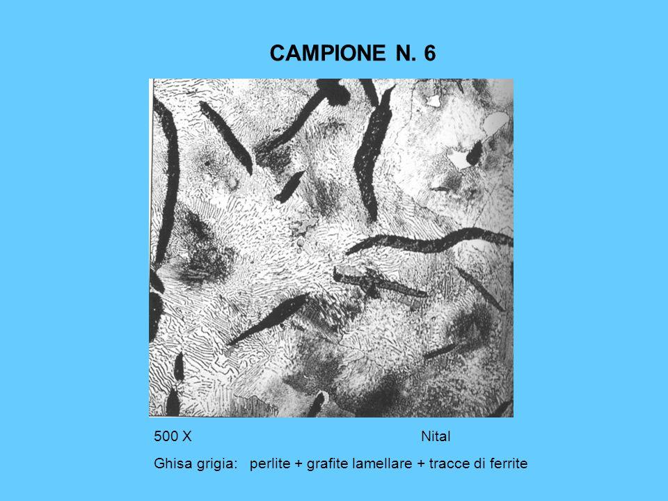 CAMPIONE N. 6 500 X Nital Ghisa grigia: perlite + grafite lamellare + tracce di ferrite