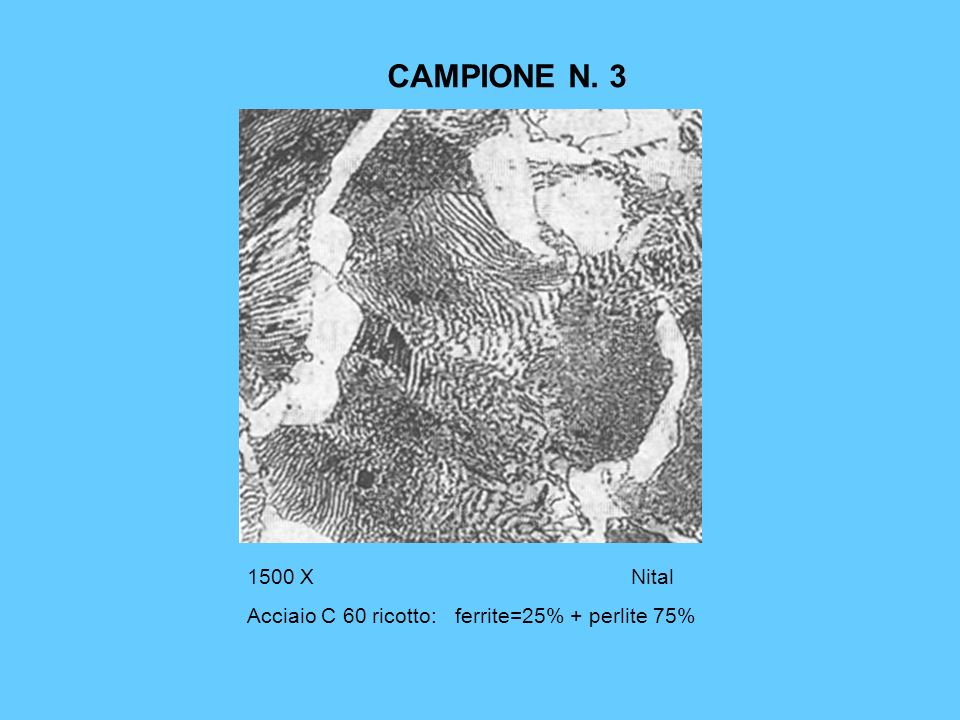 CAMPIONE N. 3 1500 X Nital Acciaio C 60 ricotto: ferrite=25% + perlite 75%