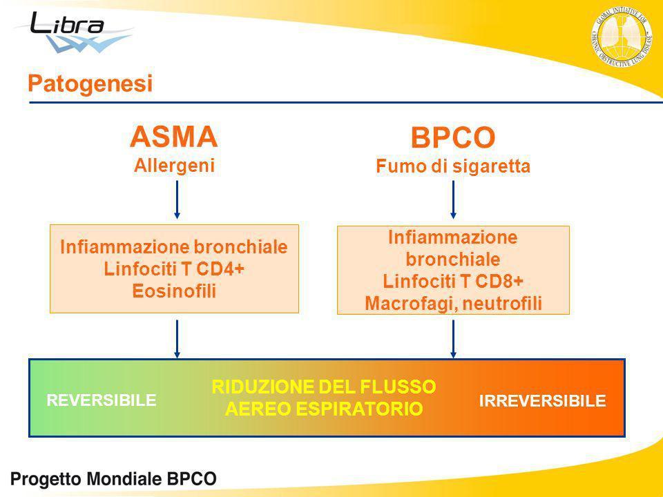ASMA BPCO Patogenesi Allergeni Fumo di sigaretta