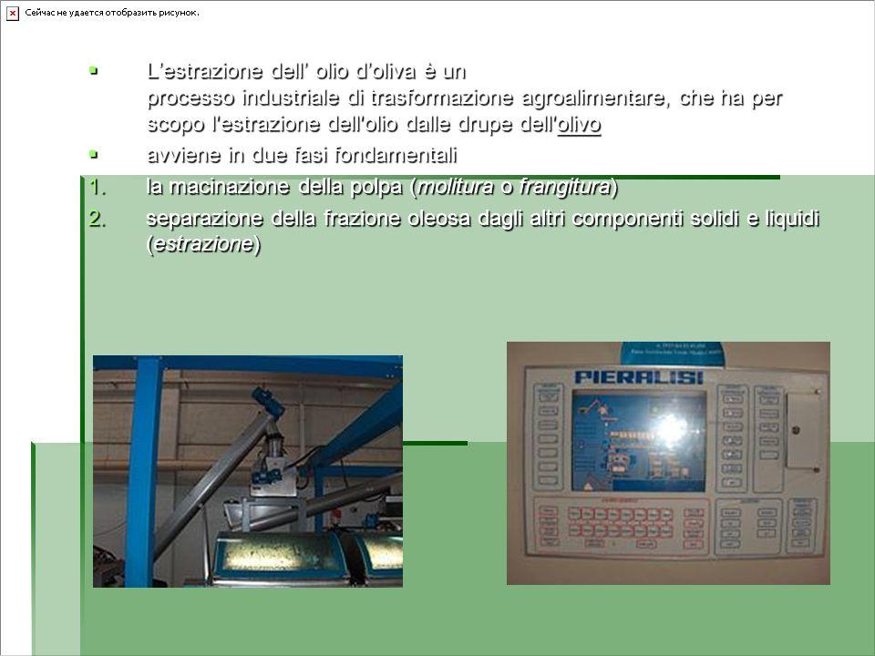 L'estrazione dell' olio d'oliva è un processo industriale di trasformazione agroalimentare, che ha per scopo l estrazione dell olio dalle drupe dell olivo