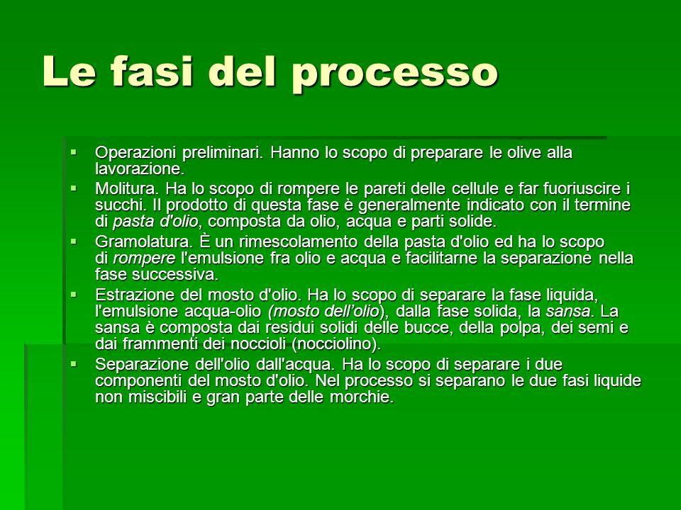 Le fasi del processo Operazioni preliminari. Hanno lo scopo di preparare le olive alla lavorazione.