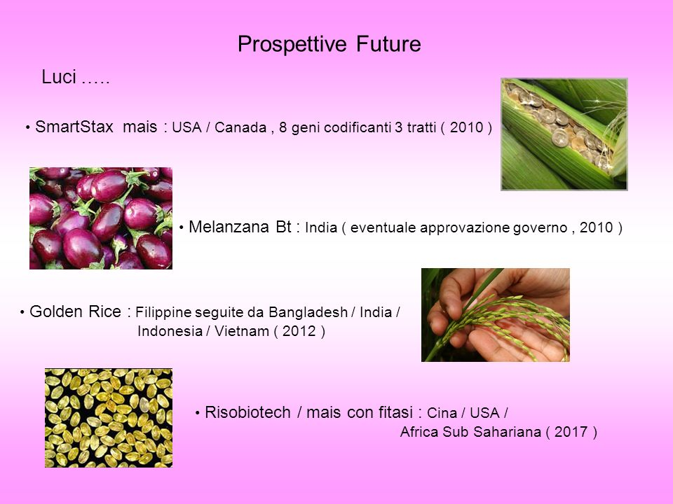 Prospettive Future Luci …..