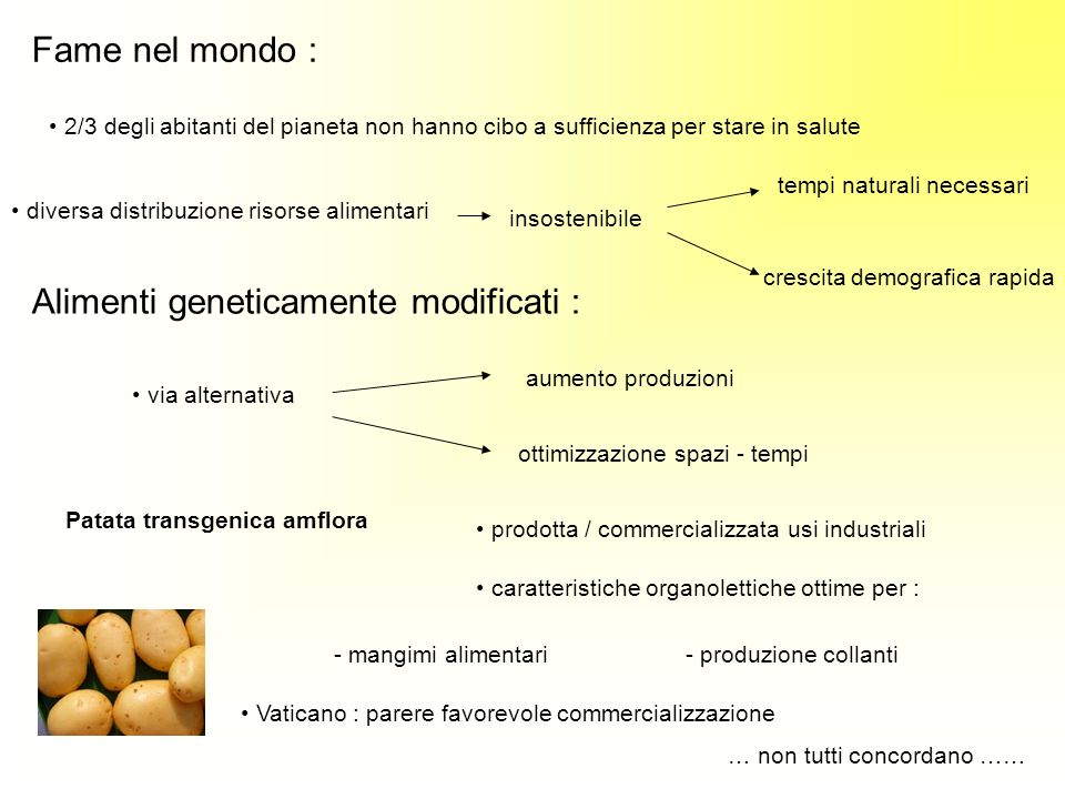 Alimenti geneticamente modificati :