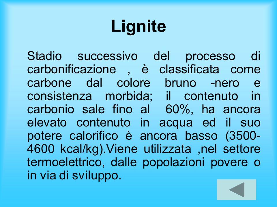 Lignite