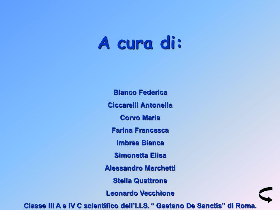 A cura di: Bianco Federica Ciccarelli Antonella Corvo Maria
