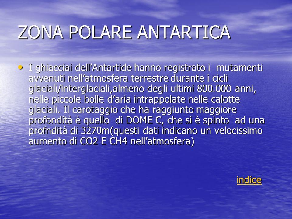 ZONA POLARE ANTARTICA