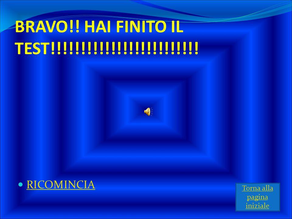 BRAVO!! HAI FINITO IL TEST!!!!!!!!!!!!!!!!!!!!!!!!!