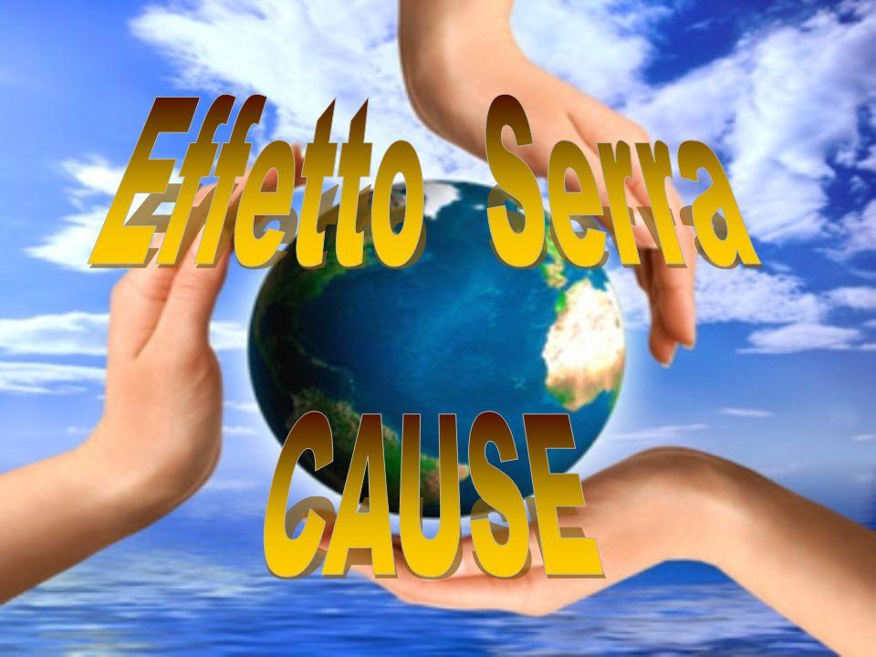 Effetto Serra CAUSE