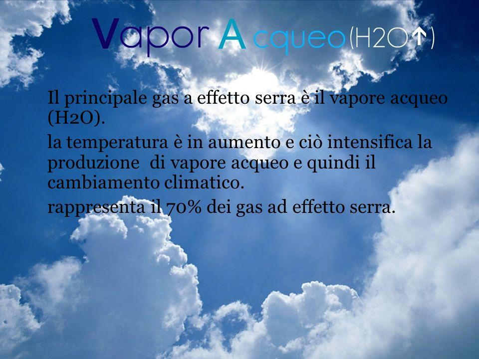 Il principale gas a effetto serra è il vapore acqueo (H2O).