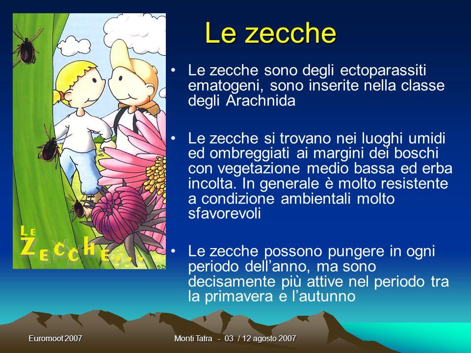 Le zecche Le zecche sono degli ectoparassiti ematogeni, sono inserite nella classe degli Arachnida.
