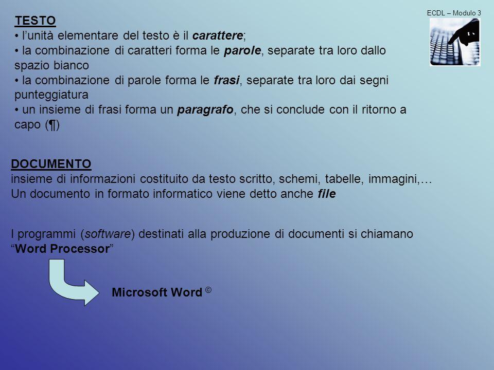 l'unità elementare del testo è il carattere;