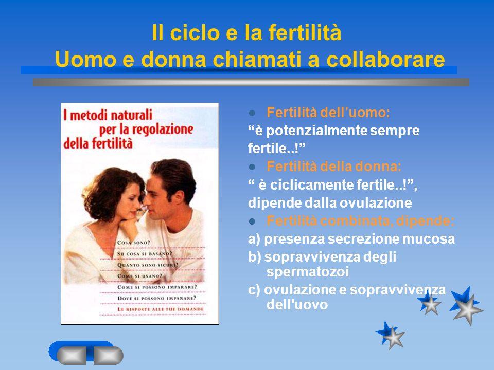 Il ciclo e la fertilità Uomo e donna chiamati a collaborare