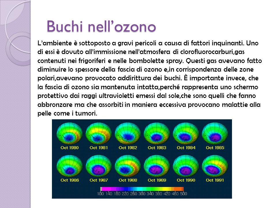 Buchi nell'ozono