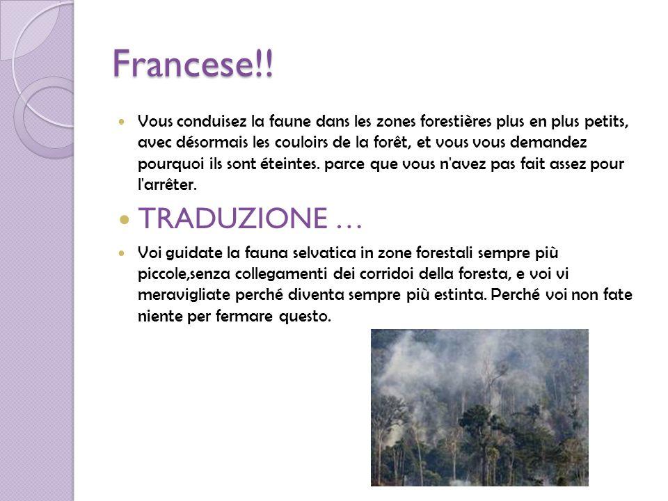 Francese!!