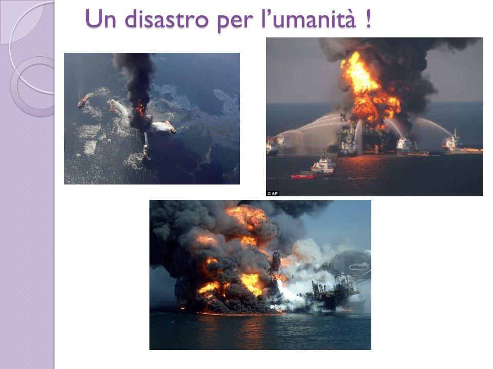 Un disastro per l'umanità !