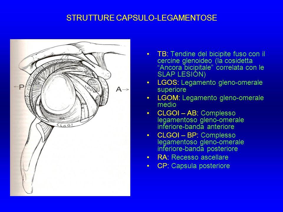STRUTTURE CAPSULO-LEGAMENTOSE