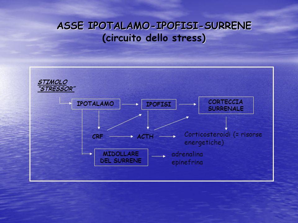 ASSE IPOTALAMO-IPOFISI-SURRENE (circuito dello stress)