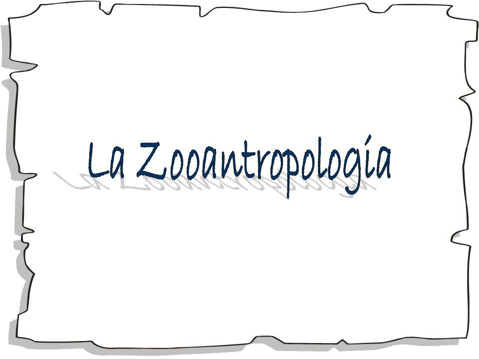 La Zooantropologia