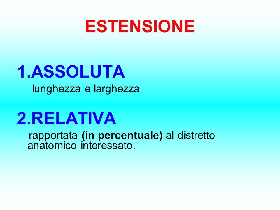 ESTENSIONE 1.ASSOLUTA 2.RELATIVA lunghezza e larghezza