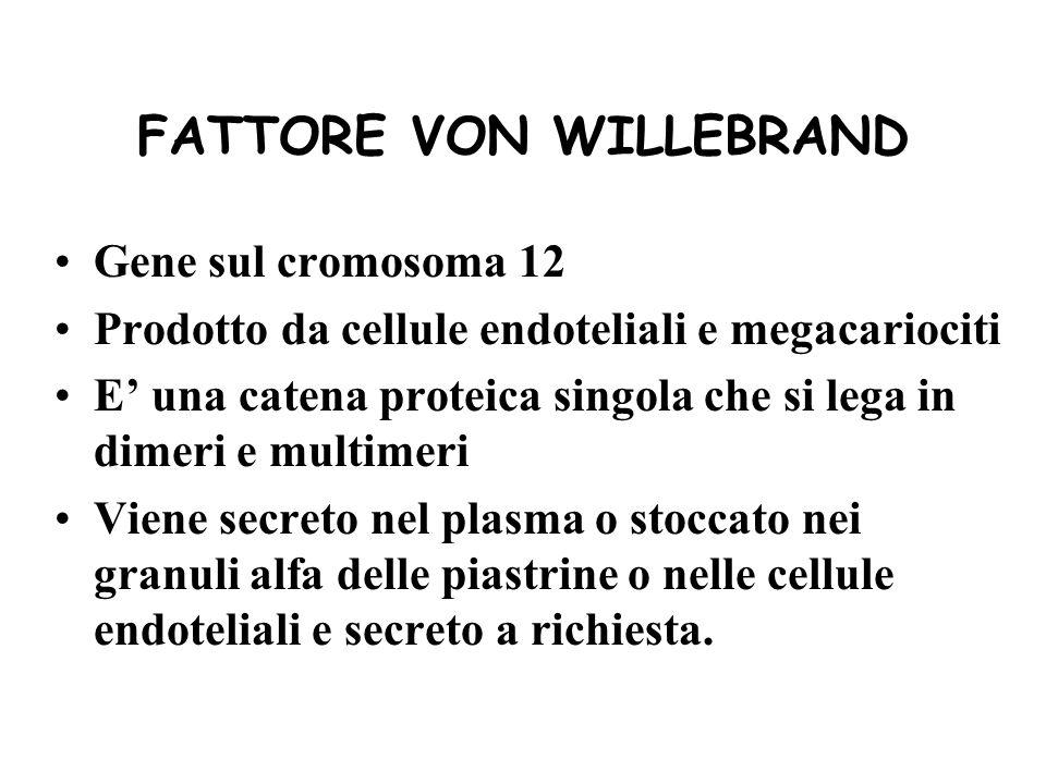 FATTORE VON WILLEBRAND