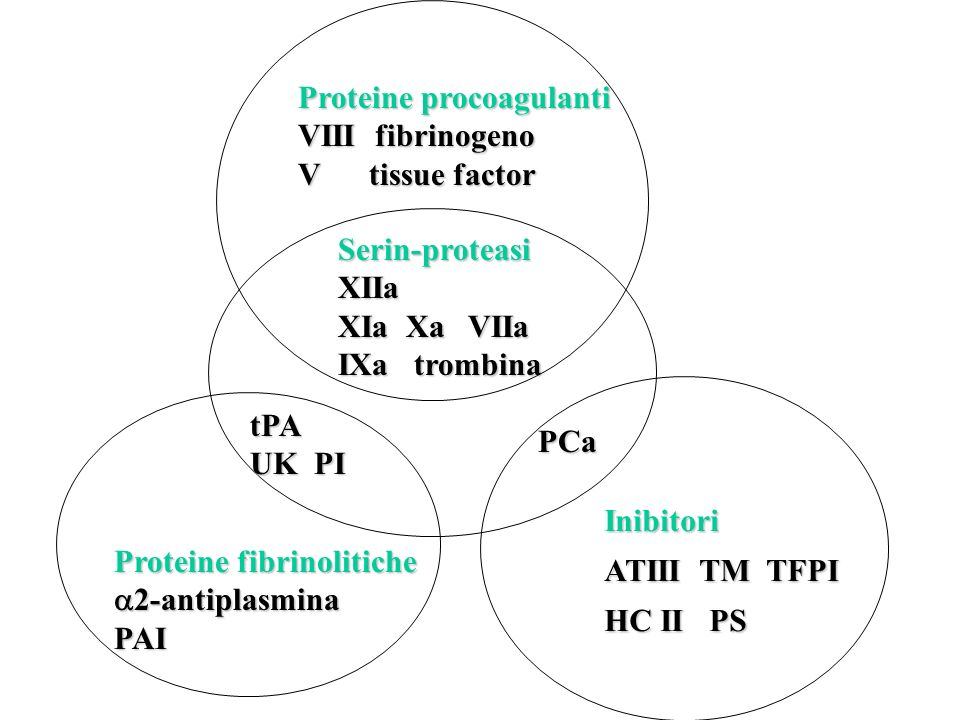 Proteine procoagulanti