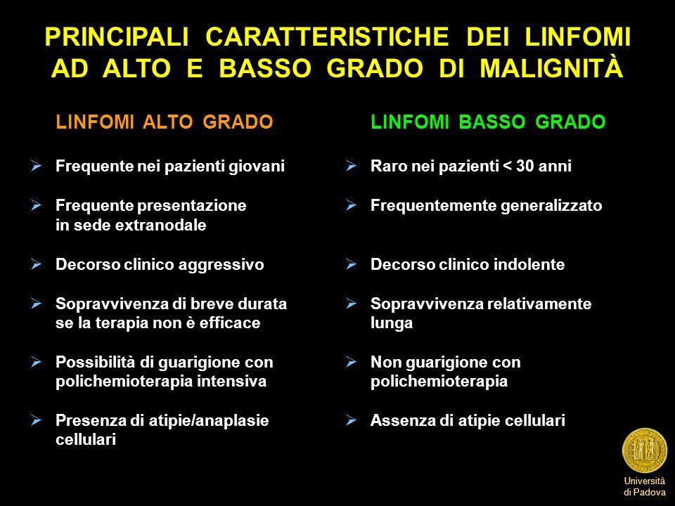 PRINCIPALI CARATTERISTICHE DEI LINFOMI AD ALTO E BASSO GRADO DI MALIGNITÀ
