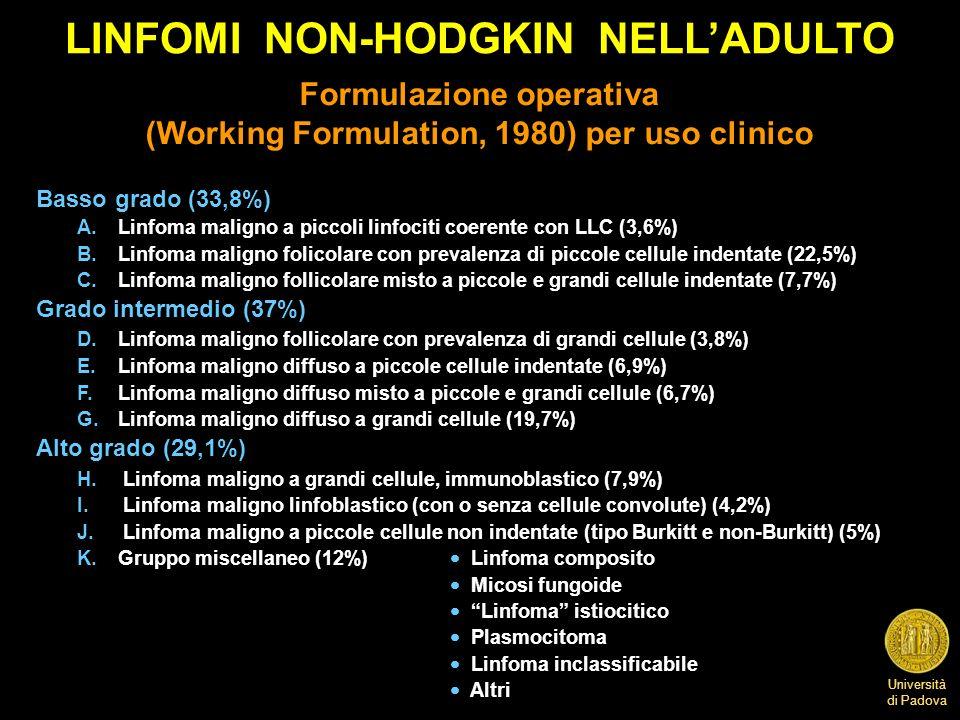 LINFOMI NON-HODGKIN NELL'ADULTO