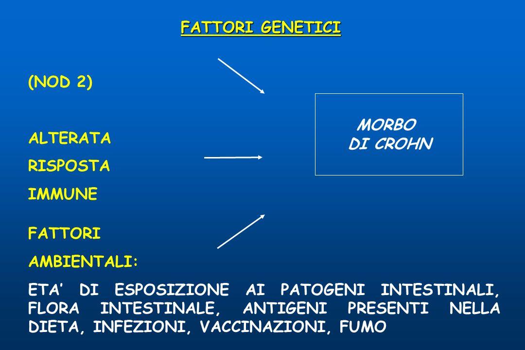 FATTORI GENETICI (NOD 2) ALTERATA. RISPOSTA. IMMUNE. MORBO. DI CROHN. FATTORI. AMBIENTALI:
