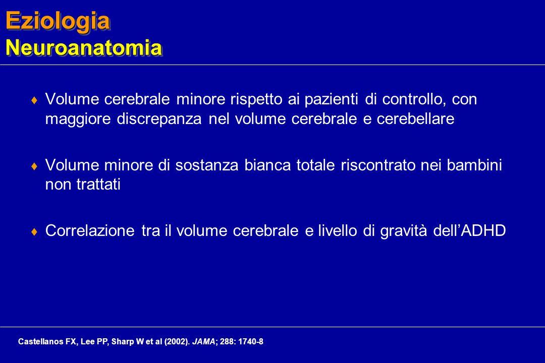 Eziologia Neuroanatomia