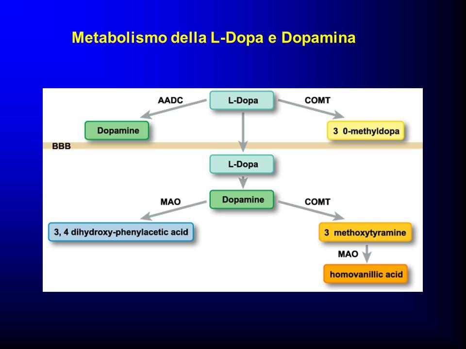 Metabolismo della L-Dopa e Dopamina