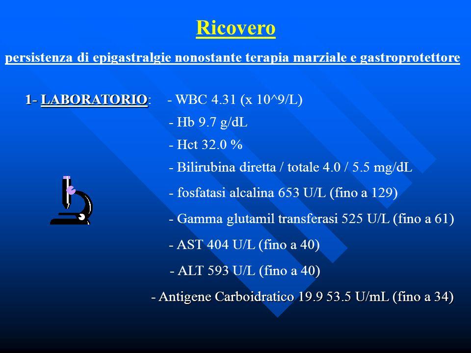 Ricovero persistenza di epigastralgie nonostante terapia marziale e gastroprotettore. 1- LABORATORIO: - WBC 4.31 (x 10^9/L)