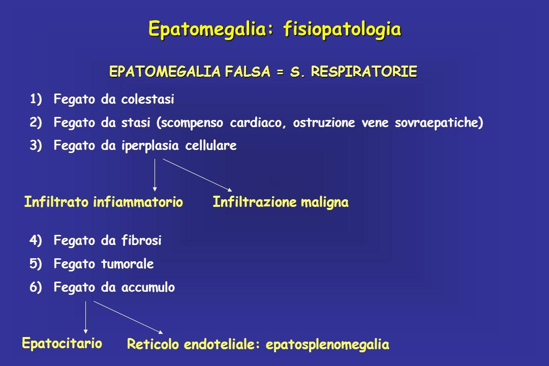 Epatomegalia: fisiopatologia