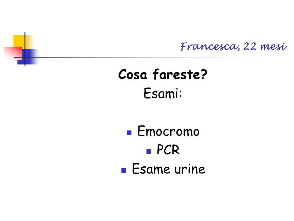 Francesca, 22 mesi Cosa fareste Esami: Emocromo PCR Esame urine