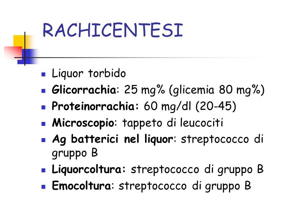 RACHICENTESI Liquor torbido Glicorrachia: 25 mg% (glicemia 80 mg%)