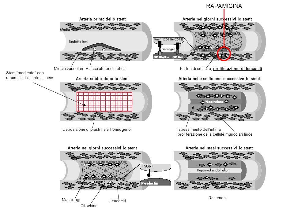 RAPAMICINA Arteria nei giorni successivi lo stent