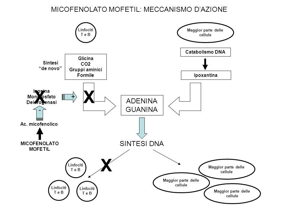 Glicina CO2 Gruppi aminici Formile Maggior parte delle cellule