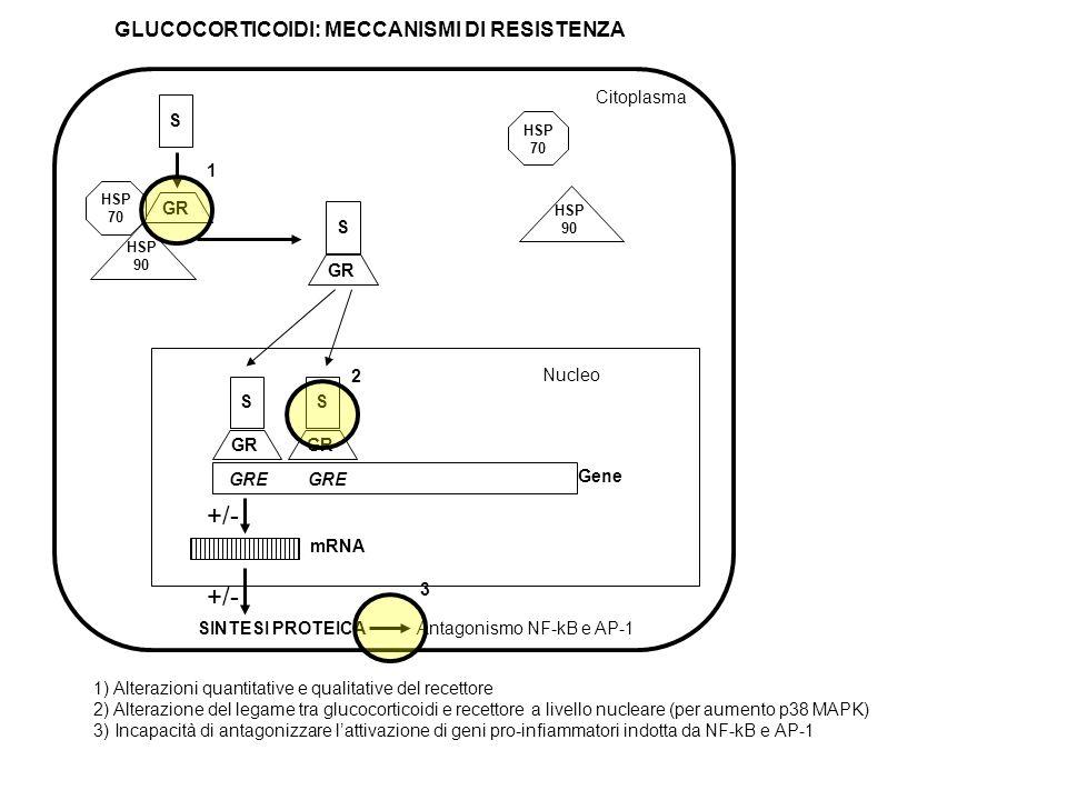 +/- +/- GLUCOCORTICOIDI: MECCANISMI DI RESISTENZA Citoplasma S GR 1 S