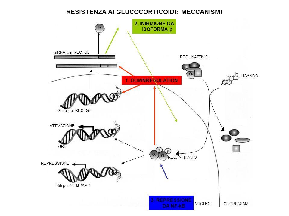 RESISTENZA AI GLUCOCORTICOIDI: MECCANISMI 2. INIBIZIONE DA ISOFORMA 