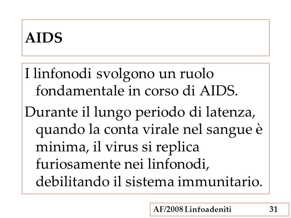 AIDS I linfonodi svolgono un ruolo fondamentale in corso di AIDS.