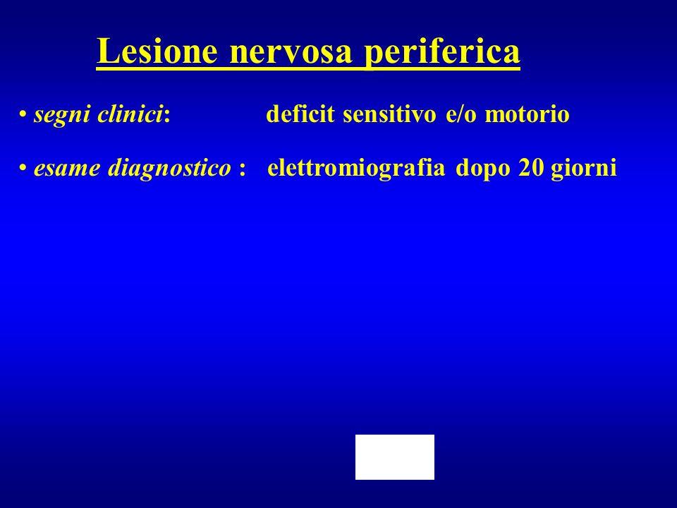 Lesione nervosa periferica