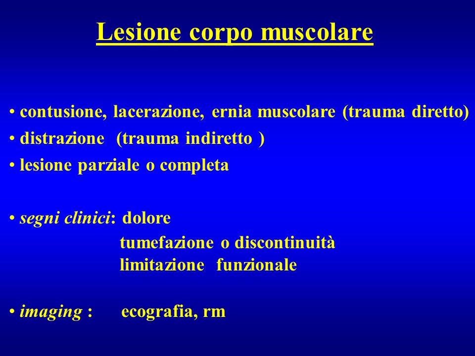 Lesione corpo muscolare