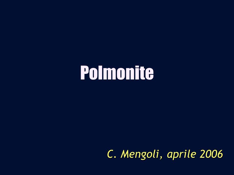 Polmonite C. Mengoli, aprile 2006
