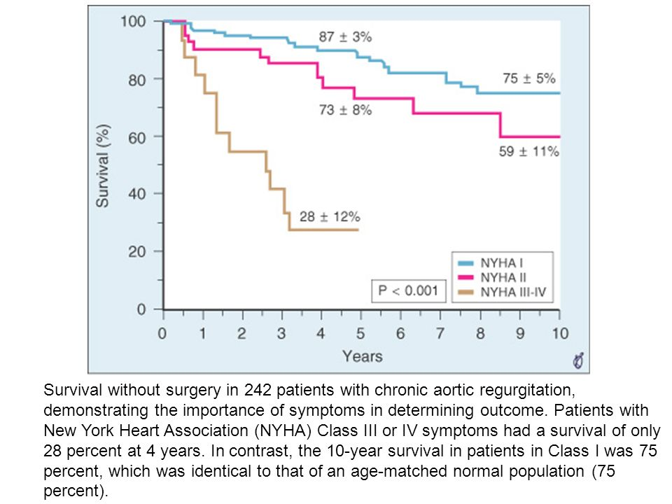 Survival without surgery in 242 patients with chronic aortic regurgitation, demonstrating the importance of symptoms in determining outcome.