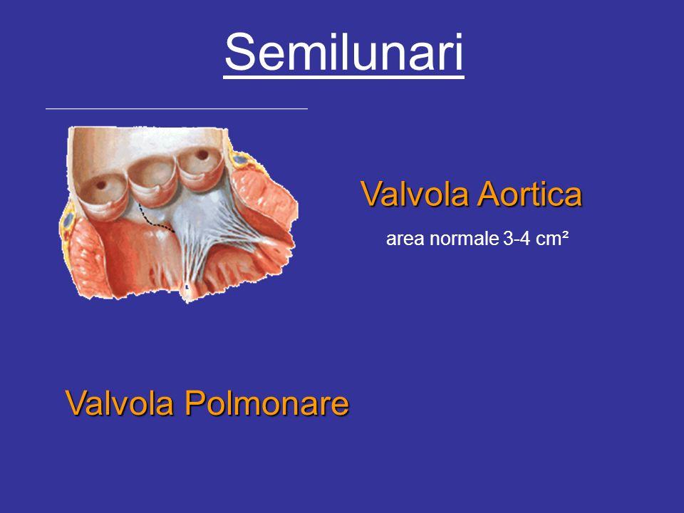 Semilunari Valvola Aortica area normale 3-4 cm² Valvola Polmonare
