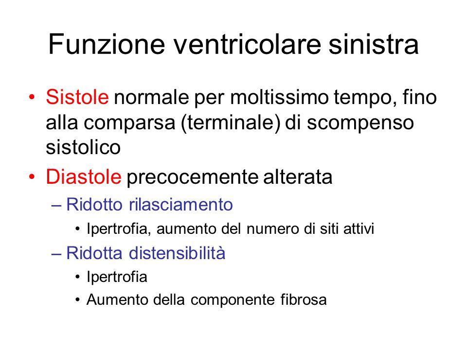 Funzione ventricolare sinistra