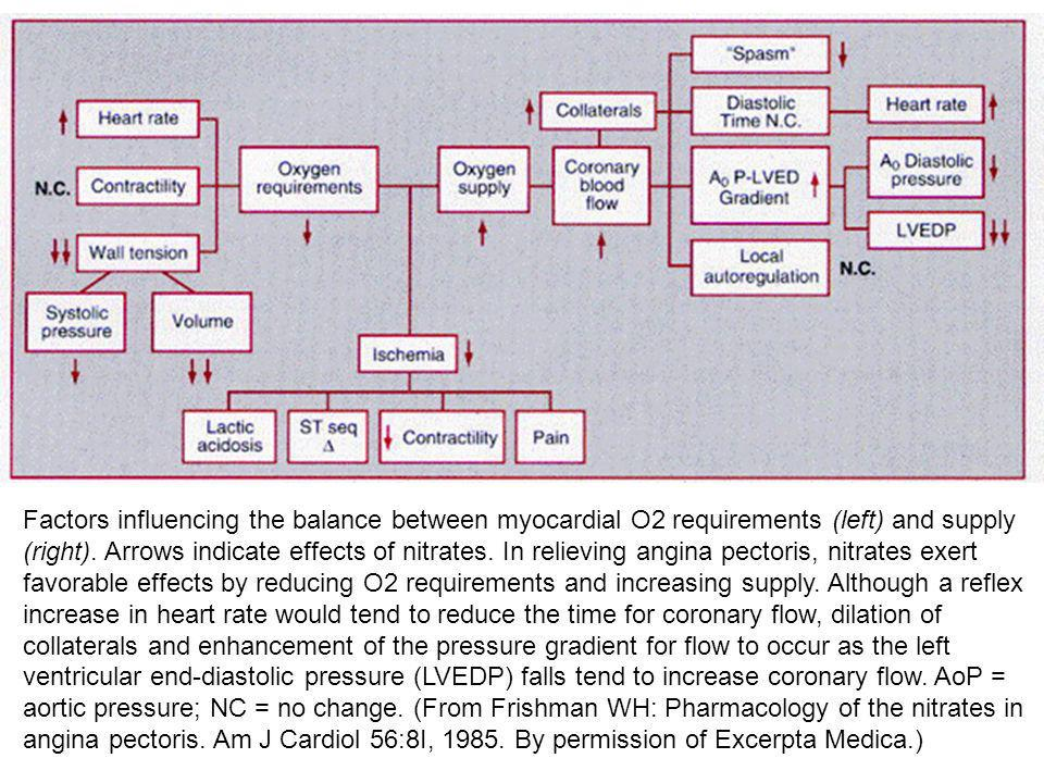 Factors influencing the balance between myocardial O2 requirements (left) and supply (right).